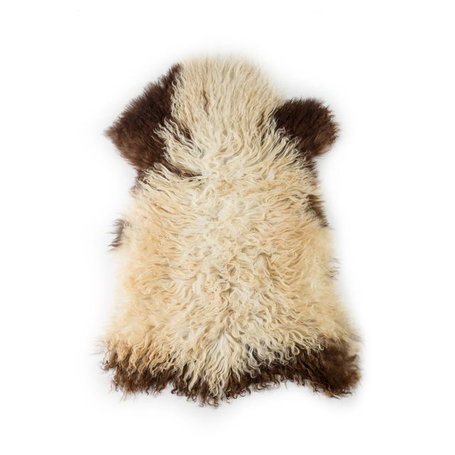 "Lights Contemporary Long Soft Wool Sheepskin Pelt - 2'0""x3'2"" For Sale - Image 7 of 7"