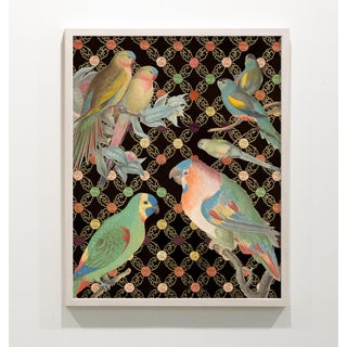 Colorful Bird Collage Unframed Print Preview