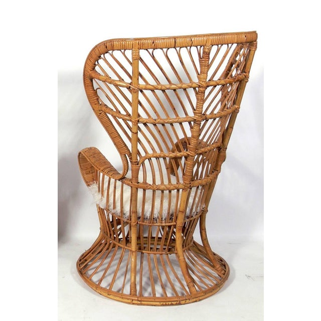 Rattan & Sheep Skin Peacock Chair 1950's - Image 2 of 2
