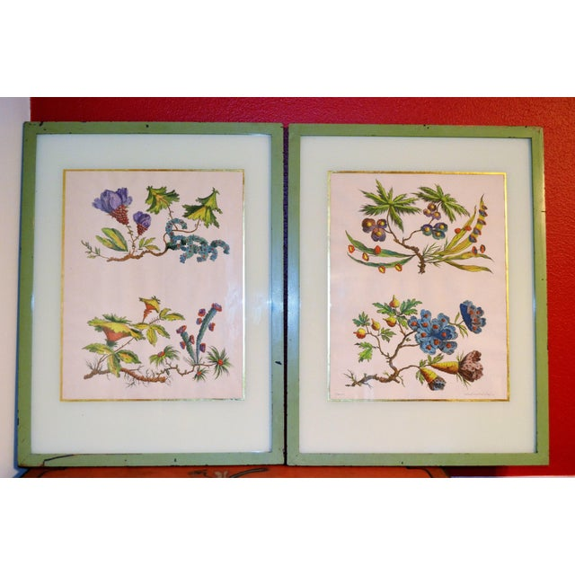 French Chinoiserie Hand Colored Floral Prints - Image 5 of 11
