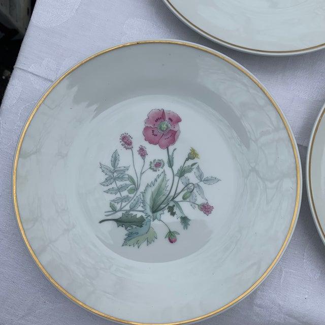 Traditional 1970s Richard Ginori Primavera Salad Plates - Set of 4 For Sale - Image 3 of 7