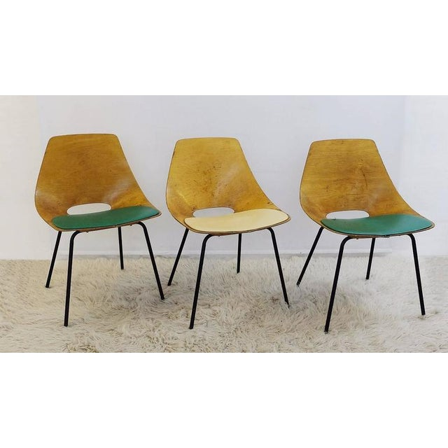 "Yellow Set of Three Pierre Guariche ""Tonneau"" Bentwood Chairs for Steiner Edition, 1954 For Sale - Image 8 of 8"