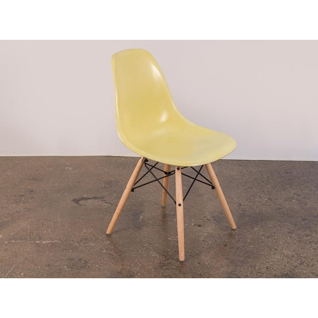 Yellow Canary Yellow Eames Shell Chair on Maple Dowel Base for Herman Miller For Sale - Image 8 of 8