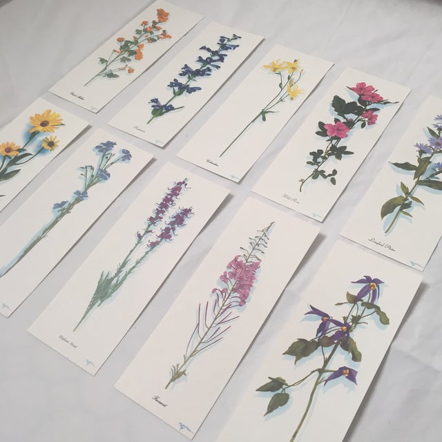 Illustration Harrison R. Crandall Wildflower Prints - Set of 10 For Sale - Image 3 of 4