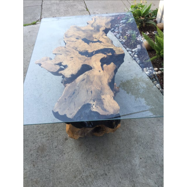 Vintage Buckeye Burlwood Coffee Table - Image 3 of 9