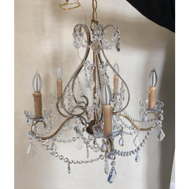Schonbek Style Crystal Chandelier For Sale - Image 4 of 4