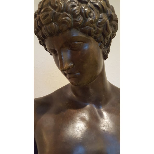 Ceramic Bust of Antinous, Lover of Emperor Hadrian For Sale In Phoenix - Image 6 of 6