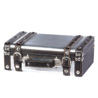 Decorative Aluminum Clad Travel Suitcase /Storage Trunk