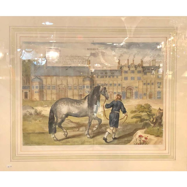 Army Green Set of Four Finely Framed and Matted Engravings of English Men on Their Horses For Sale - Image 8 of 13