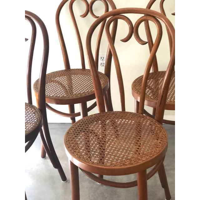Mid-Century Modern Vintage Thonet Sweetheart Bentwood Cane Bistro Cafe Chairs--Set of 4 For Sale - Image 3 of 9