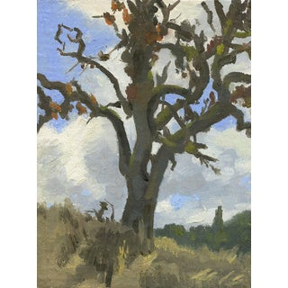Original Oil Painting: Dying Oak Tree, Plein Air For Sale