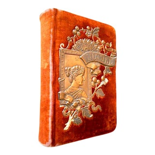 Late 19th Century Illustrated Book, ''Lucile'' Burnt Orange Velvet Covers With Pictoral Bas-Relief by Owen Meredith For Sale
