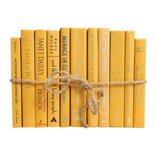 Modern Mustard Colorpak - Decorative Books in Dark Yellow For Sale