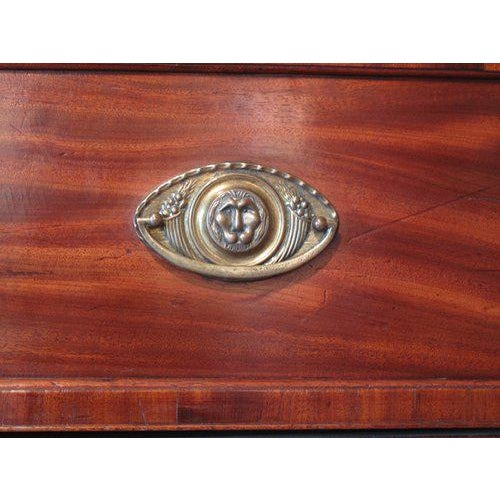 English William IV Mahogany Secretary Bookcase For Sale - Image 10 of 11