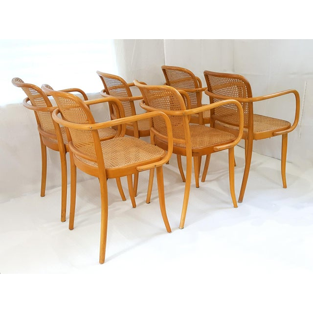 1970s Vintage Stendig Cane Bentwood Dining Chairs- Set of 6 For Sale - Image 5 of 12