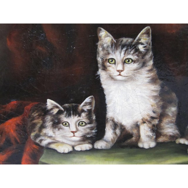 Late 19th Century Antique Henriette Ronner Style Signed Kitten Oil Painting For Sale - Image 4 of 11