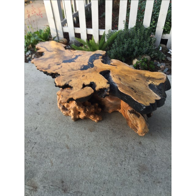 Vintage Buckeye Burlwood Coffee Table - Image 6 of 9