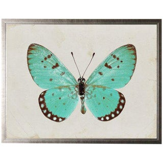 "Turquoise Butterfly - 25.5"" X 19.5"" For Sale"