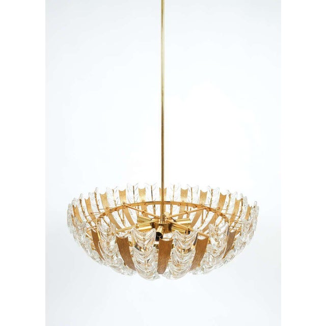 Gold Palwa Large Gold Brass and Glass Chandelier Lamp, 1960 For Sale - Image 8 of 10