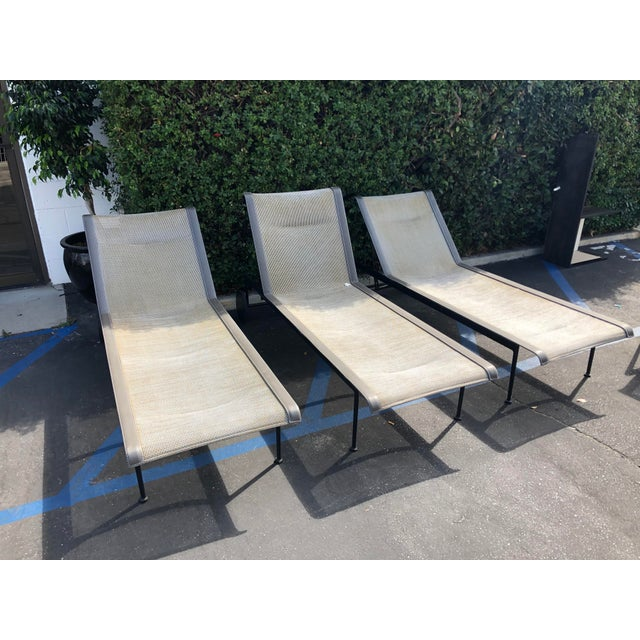Knoll Knoll 1966 Collection Adjustable Chaises - 3 Pieces For Sale - Image 4 of 7