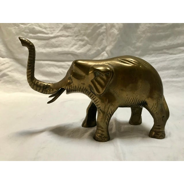 A precious solid brass elephant with hand etched details. His eyes have a very realistic quality as if you almost expect a...