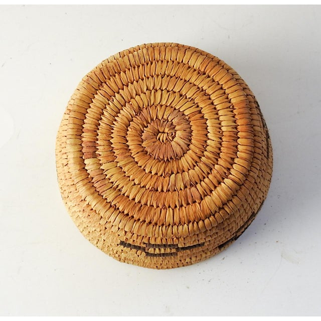 Papago American Indian Art Small Papago Coil Basket For Sale - Image 4 of 5