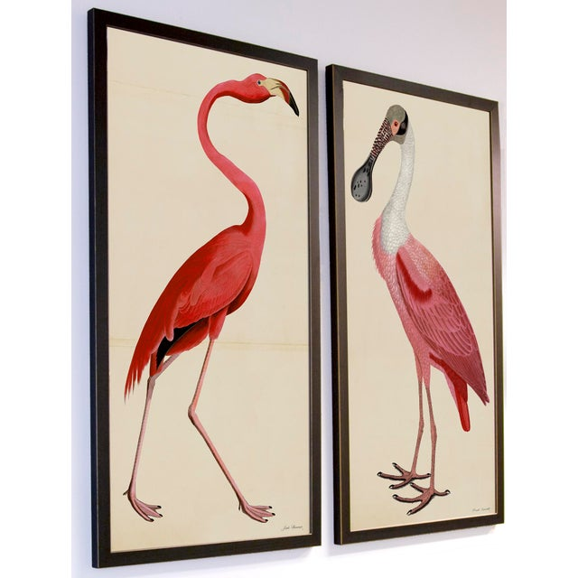 Pink Birds Prints- a Pair For Sale In Atlanta - Image 6 of 9