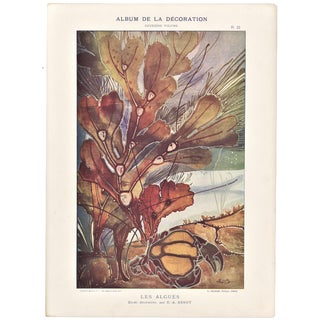 Decorative French Design Chromolithograph by E. A. Seguy- Algae Sealife For Sale