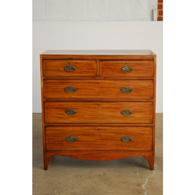 19th Century George III Mahogany Chest of Drawers For Sale - Image 10 of 12