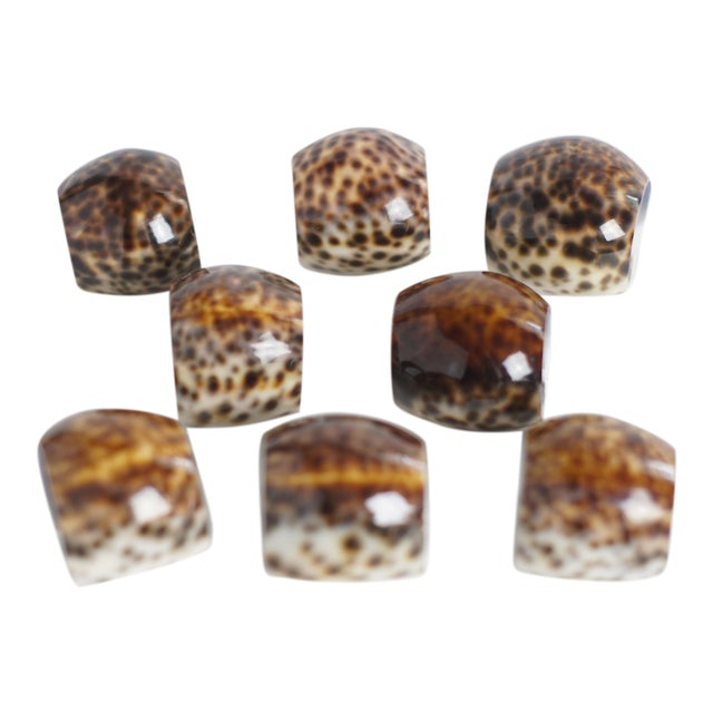 Vintage Tiger Cowrie Shell Napkin Rings- Set of 8 - Image 1 of 5