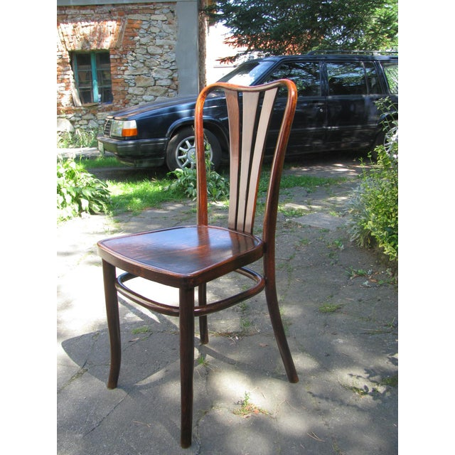Thonet Vintage Dining Chairs by Thonet, 1930s - Set of 6 For Sale - Image 4 of 11