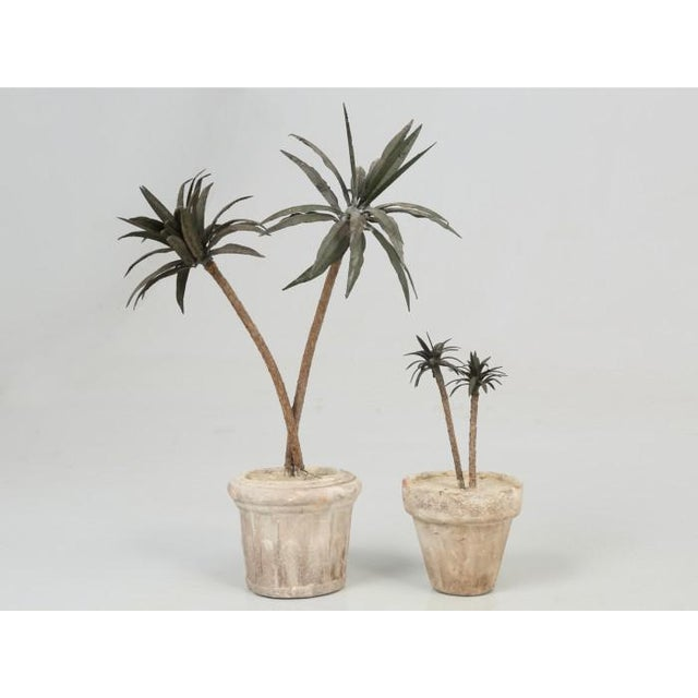 1960s French Metal Palm Trees in Clay Pots For Sale - Image 5 of 13