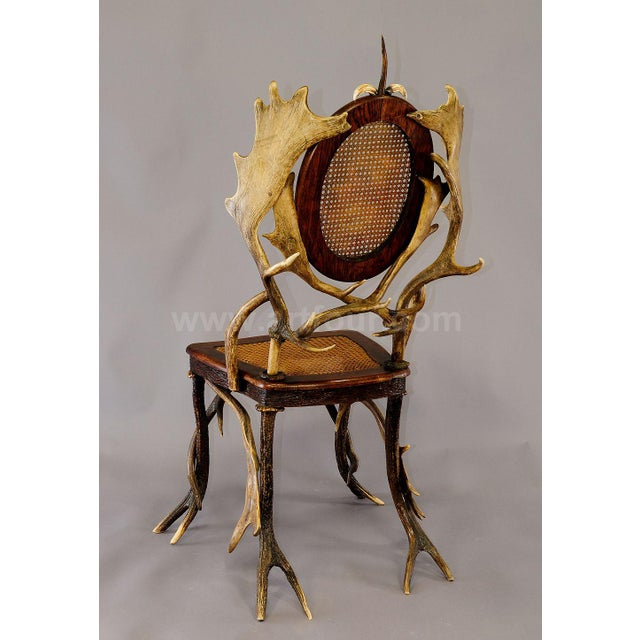 an antique wicker antler chair, made of horns from the deer and fallow deer. decorated with a turned horn rose and...