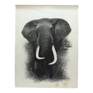 """Bull Elephant"" Limited Edition Signed Numbered (110/500) Print by Paul M. Breeden For Sale"