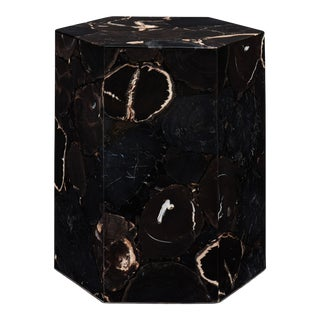Hexagon Petrified Wood Stool, Natural Dark For Sale