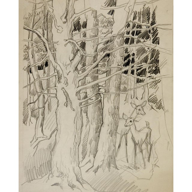 Cottage George Baer Pencil Study of Deer in Forest For Sale - Image 3 of 3
