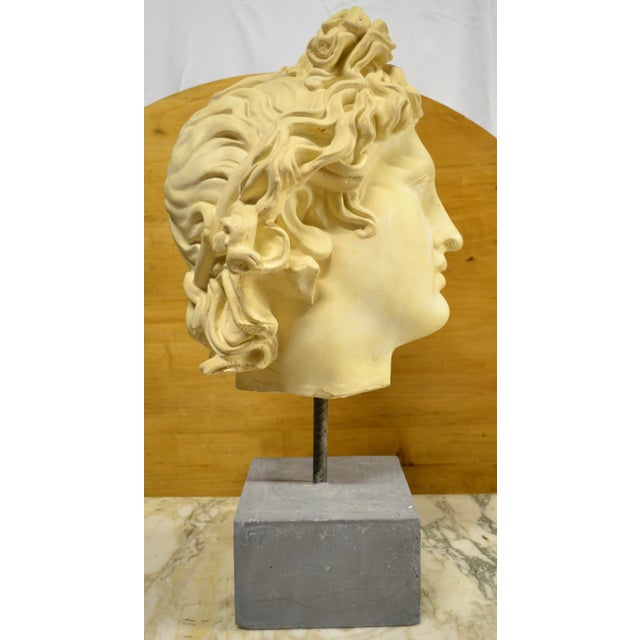 Stone NeoClassical Plaster Bust Sculpture - Greek God's Head on Stone Base For Sale - Image 7 of 10