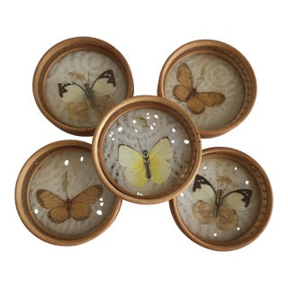 Mid-Century Butterfly Bamboo Coasters - Set of 5