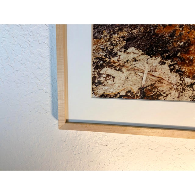 1980s Vintage Original Abstract Photograph by Willy Skigen For Sale In West Palm - Image 6 of 13