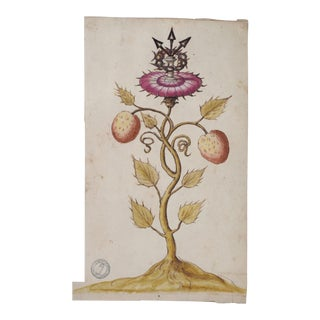 "Rare Old Master Color Drawing ""Holy Thorn"" at Glastonbury W/ Collectors Stamp, 18th C. For Sale"