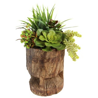 Old Wood Ukali with Faux Succulents