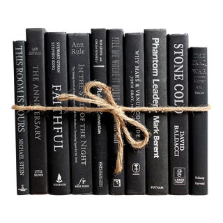 Modern Deco ColorPak - Decorative Books in Black and Silver