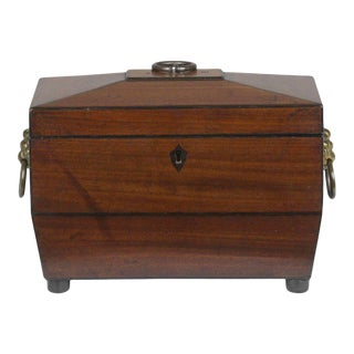 Regency Sarcophagus Shaped Tea Chest For Sale
