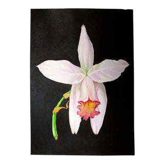 Contemporary Tropical Cattleya Orchid Botanical Watercolor Painting For Sale