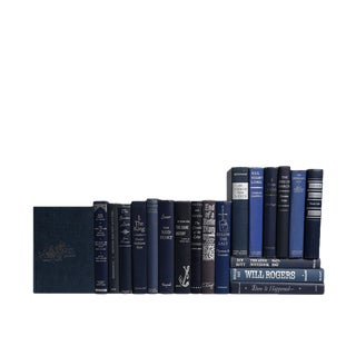 Starry Night MIX - Midcentury Blue & Silver : Set of Twenty Decorative Books
