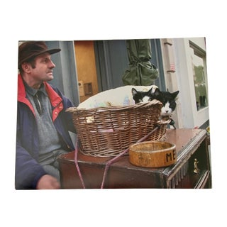 """""""Cats at Portobello Market, London"""" Contemporary Street Photograph Print by Louise Weinberg For Sale"""