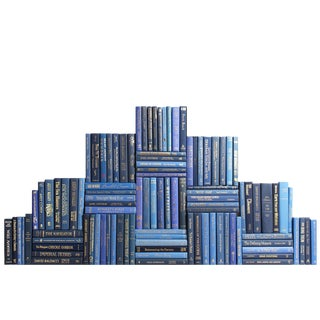 Modern Academy Book Wall : Set of One Hundred Decorative Books For Sale
