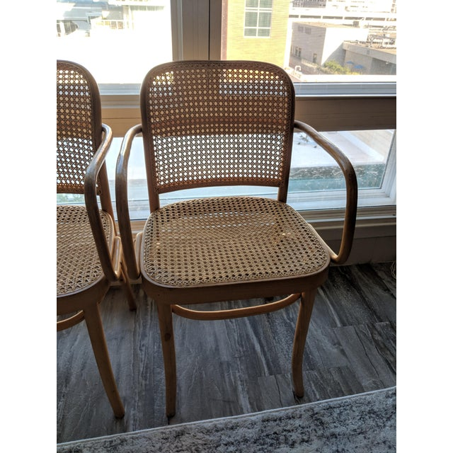 Boho Chic Set of Mid-Century Modern Josef Hoffmann Prague Chairs For Sale - Image 3 of 10