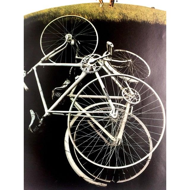 1970s Grassy Romp Print by Sam Haskins - Image 3 of 3