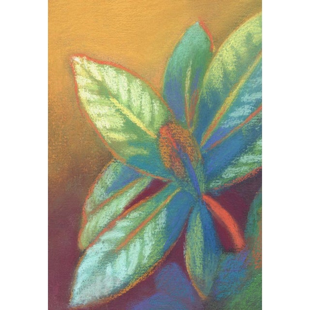 This is an original pastel still life drawing of a Rhododendron plant. The colors are vibrant. This is an original soft...